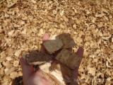 Woodchips of Elliotis and Eukalyptus Logs