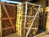 Feuerholz, Brennholz gespalten, Esche (Europäische)