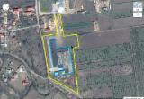 Complete Company For Sale - Buzau, Cheap former Timber Factory Wood Factory Sawmill, without equipment, FOR SALE in Patarlagele town