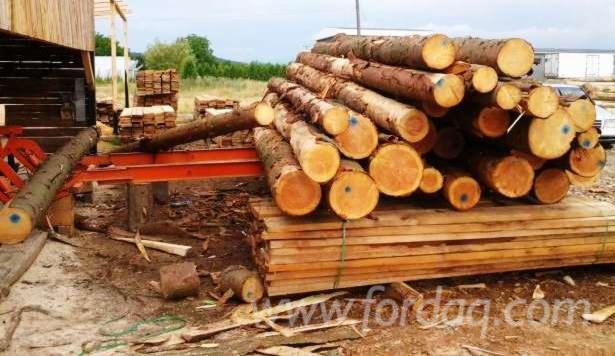 Used Wood-Mizer LT 40 Circular Saw For Sale Romania