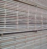 Larix spp.(Larch) sawn timber different sizes