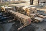 Hardwood  Unedged Timber - Flitches - Boules - Loose, Rowan