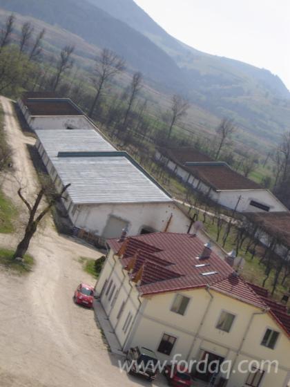 Пилорама Румунія Для Продажу