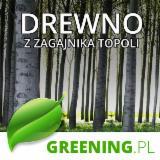 Usługa nasadzadzenia zagajnika, Poland