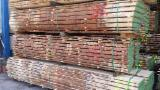 Laubholz  Blockware, Unbesäumtes Holz Zu Verkaufen Tschechische Republik - Blockware, Eiche