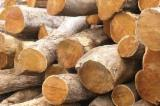 TEAK LOGS FOR SALE