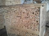 Firewood Cleaved - Not Cleaved, Kindlings (Fire Starter Wood), Maritime Pine (Pinus pinaster)