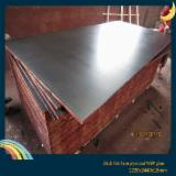 Plywood Other Species For Sale - Film Faced Plywood (Brown Film), Poplar