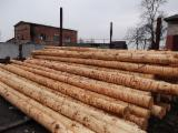 WOODEN ELECTRICAL POLES