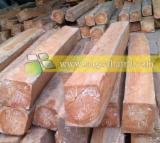 Tropical Wood  Logs Teak - Teak Wood