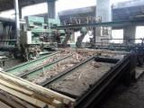 Complete Production Line, Sawmill, MEM