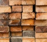 Tropical Wood  Logs For Sale - FRAMIRE SAW LOGS