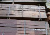 Tropical Wood  Sawn Timber - Lumber - Planed Timber - Azobe poles