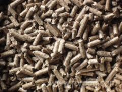 Wood-pellets-EN-A2-and-EN-B---for