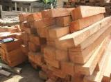 Tropical Wood  Logs - FRAMIRE WOOD LOGS AND LUMBER SAW LOGS