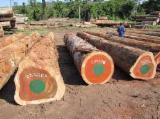 Tropical Wood  Sawn Timber - Lumber - Planed Timber - Padouk Wood Logs and Lumber