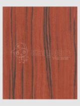 Sliced Veneer - Engineered Veneer, Poplar, Quartered, plain