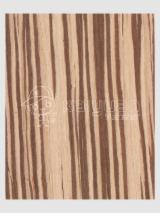 Engineered Veneer, Zingana (Zebrano, Zebrawood, Allen ele), Quartered, plain