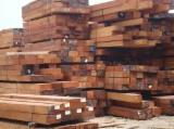 Tropical Wood  Logs For Sale - SIPO SAW LOGS