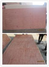 null - Bintangor  BB; BC; CC; CD; DE Natural Plywood China