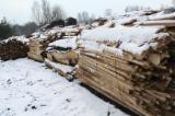 Firelogs - Pellets - Chips - Dust – Edgings - Oak (European) in Poland Off-Cuts/Edgings