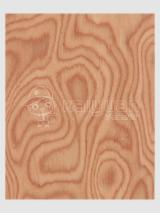 Engineered Veneer, burl, Flat cut, burl