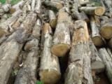TEAK ROUND AND SQAURE WOOD LOGS