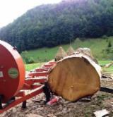 Polovna Vertikalna Tračna Pila Za Trupce WOODMIZER LT40 sa Rumunija