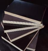 Buy Or Sell  Film Faced Plywood Brown Film - FSC Birch Brown Film Faced Plywood, 4-40 mm