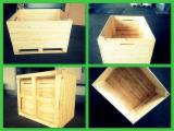 Box Pallet, New