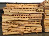 Beech (Europe) Planks (boards)  in Romania