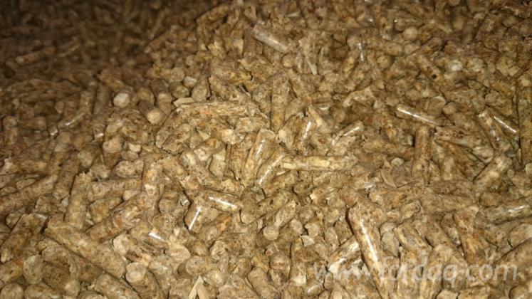 -fuel-pellets-in