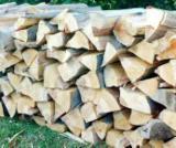 Buy Or Sell  Firewood Woodlogs Cleaved Romania - Firewood Cleaved - Not Cleaved, Firewood/Woodlogs Cleaved, Beech (Europe)