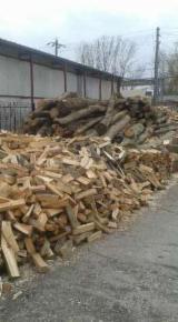 Firewood, Pellets And Residues - Beech, White Ash, Oak Firewood/Woodlogs Cleaved