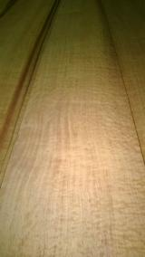Buy Or Sell  Natural Veneer - Special quarter bubinga