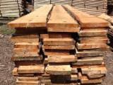 Softwood  Logs - Spruce, pine