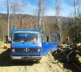 Truck - Lorry - Used 1987 Truck - Lorry Romania
