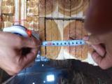Sawn Timber - Rough acacia sawn timber