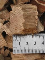 Wood Chips - Bark - Off Cuts - Sawdust - Shavings, Wood Saw Dust, Oak (European)