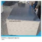 Wholesale  Film Faced Plywood Brown Film - 18mm waterproof shuttering plywood
