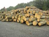Hardwood  Sawn Timber - Lumber - Planed Timber For Sale - Dry strips of oak