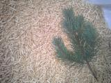 Wholesale  Wood Pellets - Wood Pellets