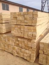 Pine sawn wood. DDP EU. Natural and transport humidity