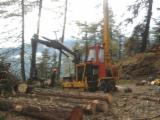 Used Forestry Equipment For Sale - Join Fordaq To See Offers - Skidding - Forwarding, Mobile Cable Crane, Koller