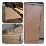mahogany plywood solid wood door