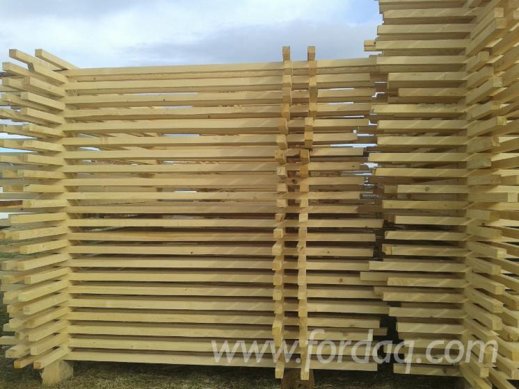 Pine-%28Pinus-Sylvestris%29---Spruce-%28Picea