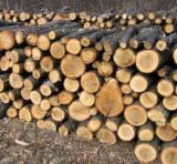 Firewood, Pellets And Residues - All Species Firewood/Woodlogs Cleaved