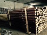 Spruce  - Whitewood Softwood Logs - Spruce  3-8 cm A Poles