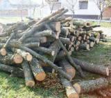 Firewood, Pellets And Residues - All Broad Leaved Species Firewood/Woodlogs Not Cleaved