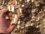 Wood Chips - Chips - wood chips - Cuts - Sawdust - Shavings, Wood Chips From Used Wood, All speci